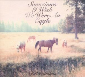 Bill Callahan - Sometimes I Wish We Were